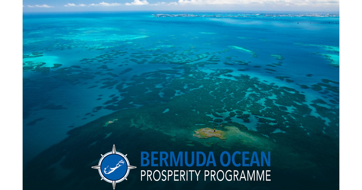 Bermuda Will Protect 20% of its Waters in New Marine Protected Areas