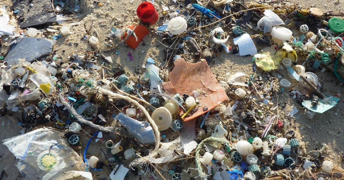Fishers Want to Help Address the Problem of Marine Litter