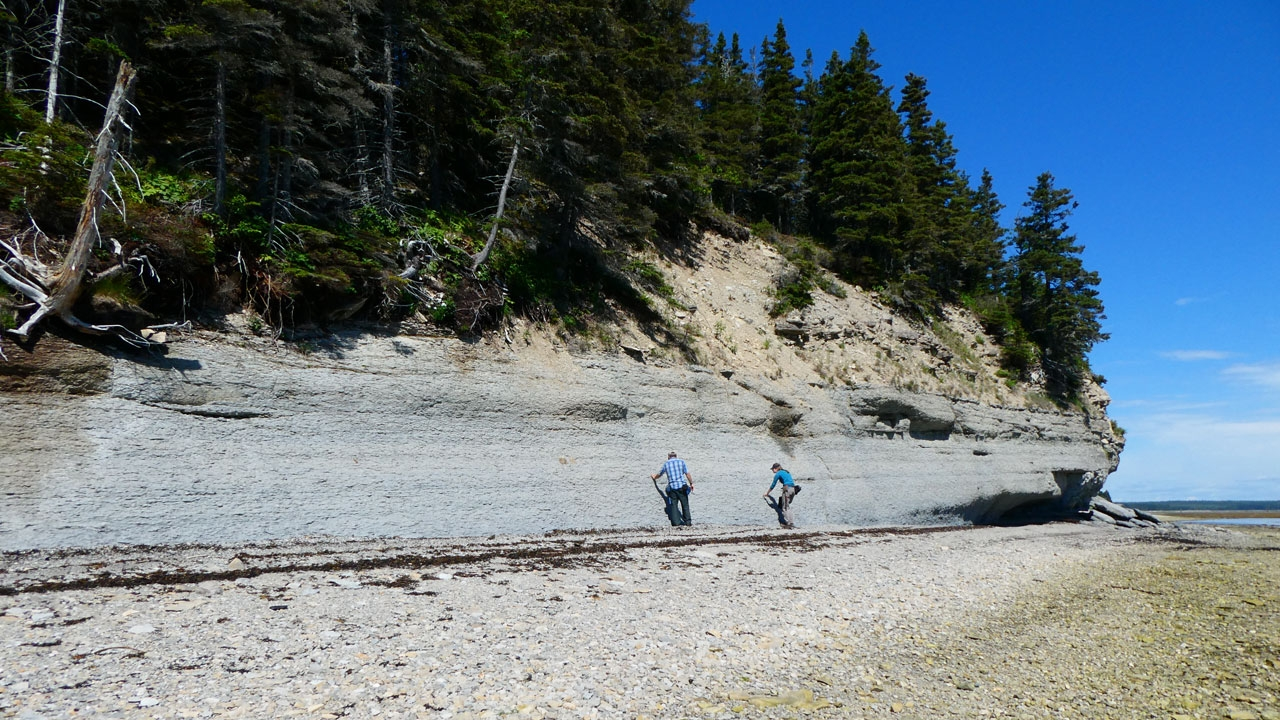 EMBED 1 Anticosti researchers gathe hero