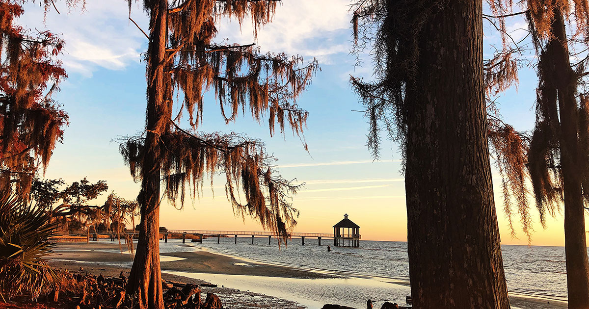 Louisiana CPRA Partnership Fund Awards $1 Million for Coastal Conservation and Restoration Projects