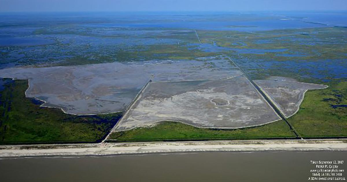 Restoration Project Creates 1200 Acres of Marsh in Coastal Louisiana