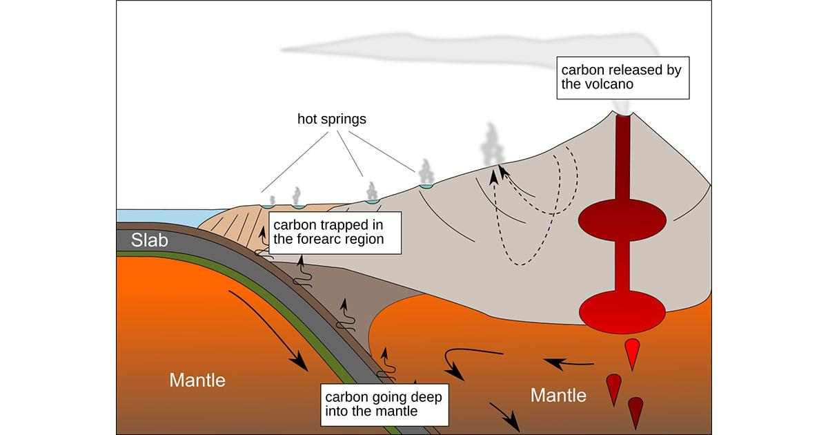 Microbes Help Prevent Millions of Tons of Carbon Dioxide from Entering Atmosphere