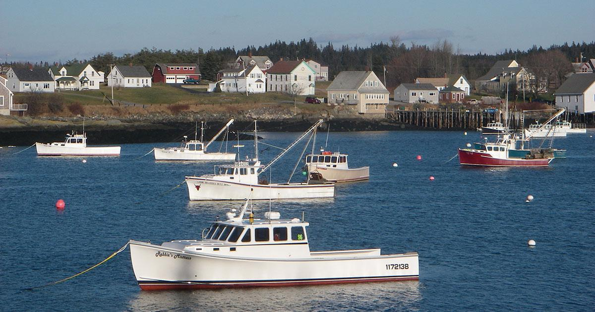 US Commercial Fishers May Face a Future of Limited Fishing Options