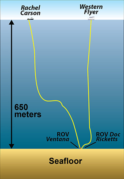 2 rov rov illustration 350
